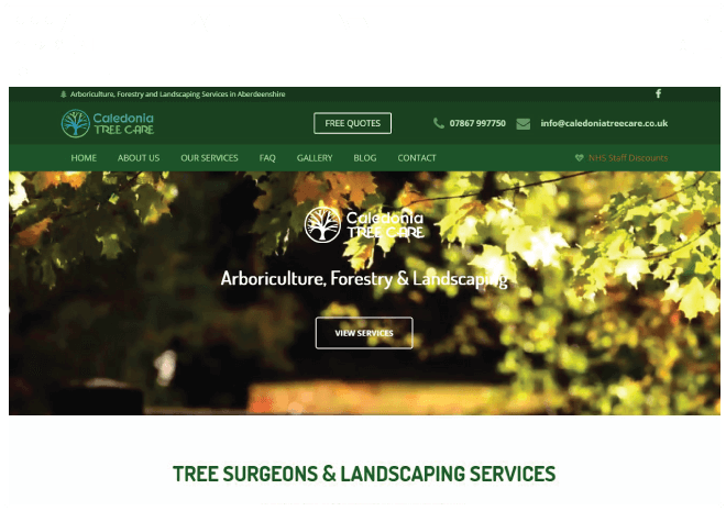 caledonia tree care
